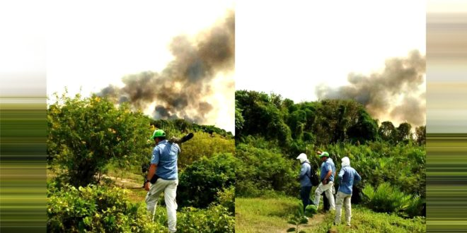 Incendio en Salamanca: humo invadió el ambiente y la ceniza cayó sobre sectores de Barranquilla