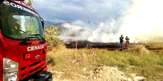 Cuerpo de Bomberos atendió incendio forestal en el barrio Nueva Frutera