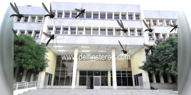 Ola de mosquitos azota el palacio de justicia de Ciénaga